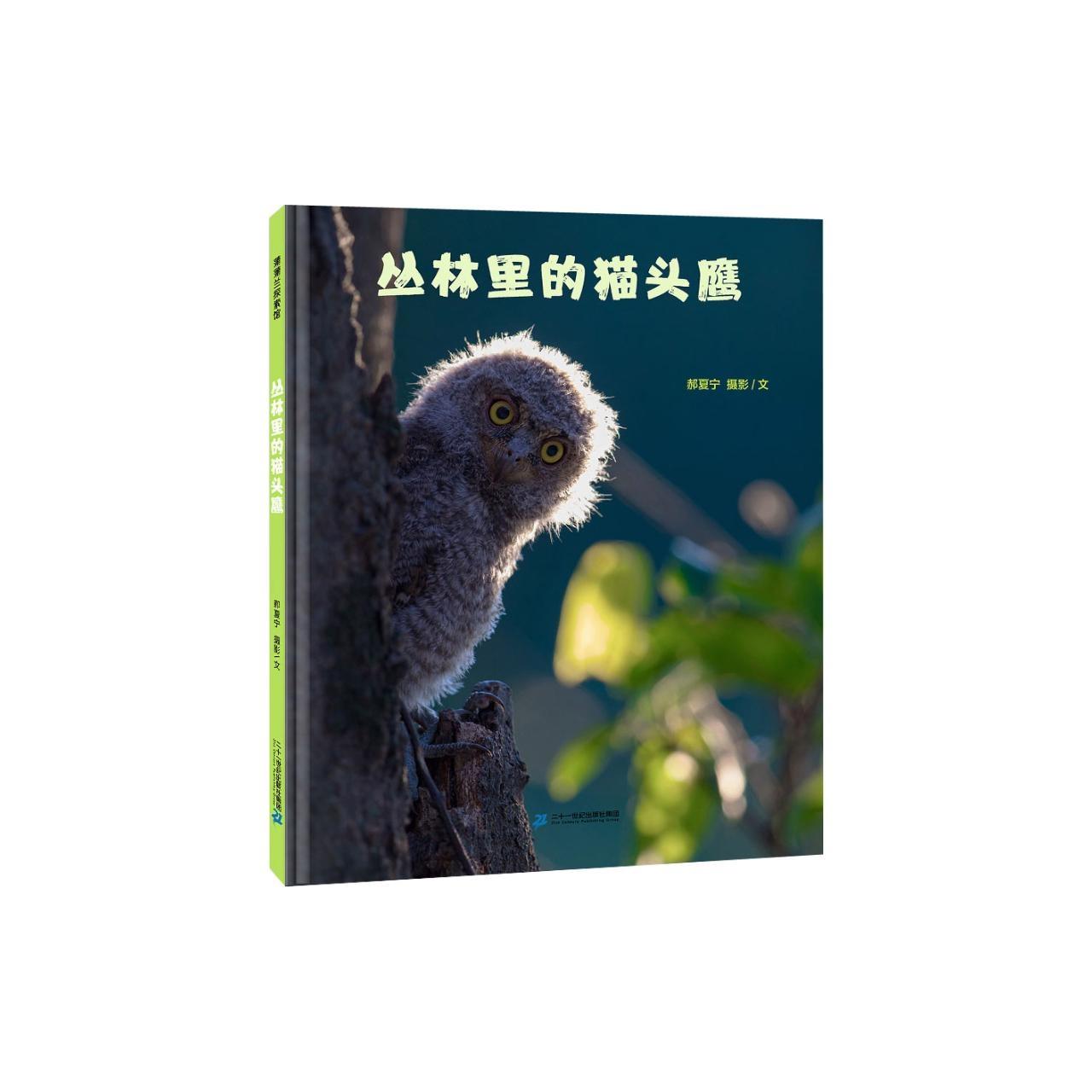 丛林里的猫头鹰 【儿童绘本/简体绘本/生动绘本】