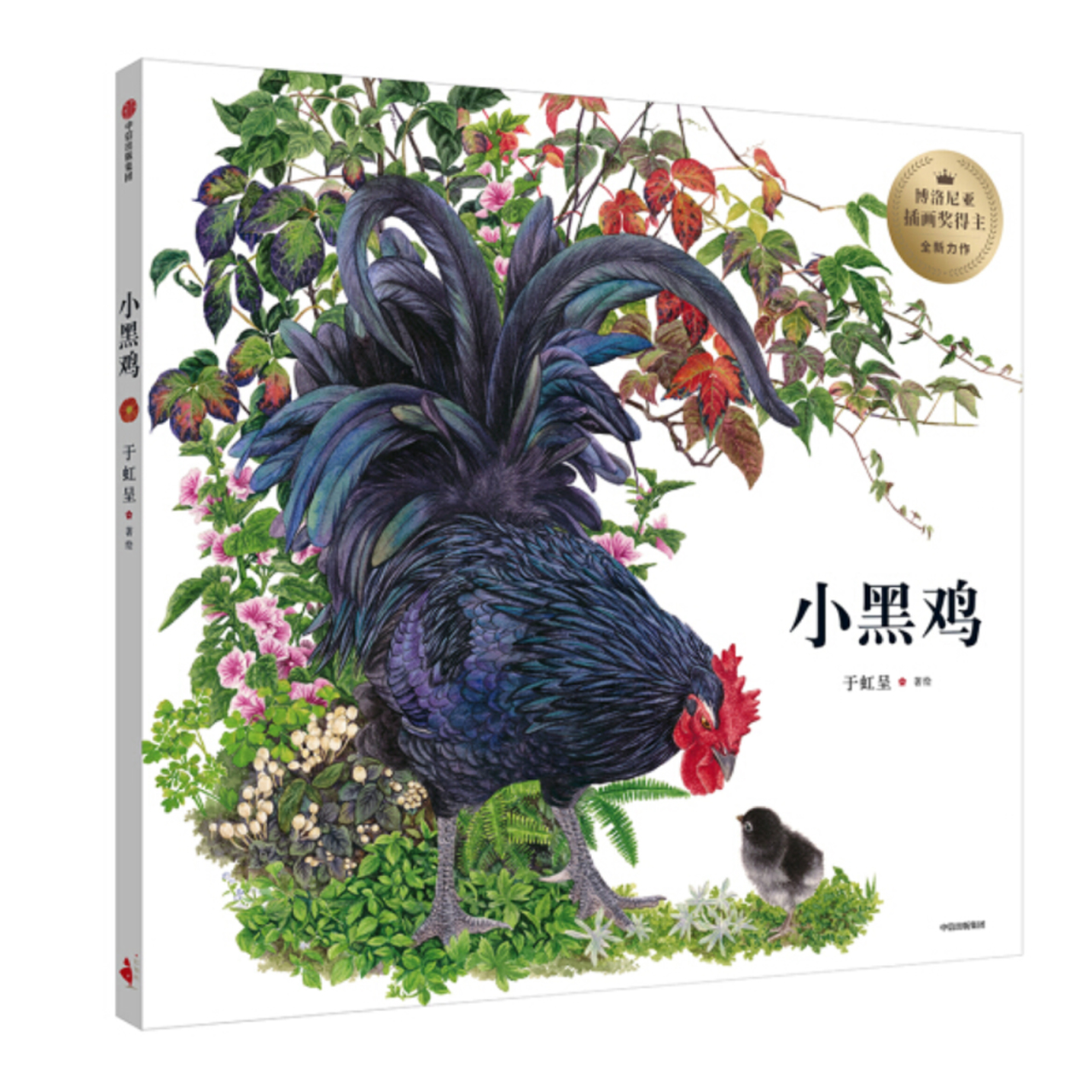 小黑鸡【儿童绘本/简体绘本/动物绘本】